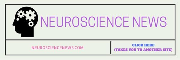 1neuroscience
