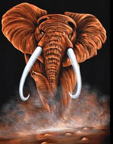elephantagitation