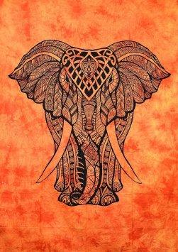 orangeelephant