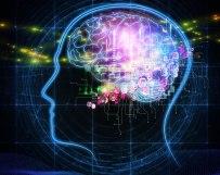 neuropsychological-testing